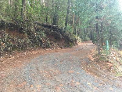 Foresthill Residential Lots & Land For Sale: 20240 Spring Garden Road