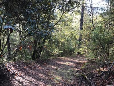 Colfax Residential Lots & Land For Sale: 4055 Iowa Hill Road