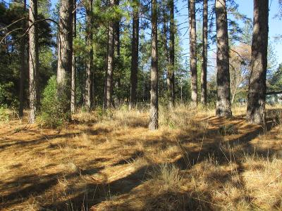 Pine Grove CA Residential Lots & Land For Sale: $75,000