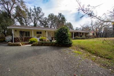 Placer County Single Family Home For Sale: 3909 Delmar Avenue