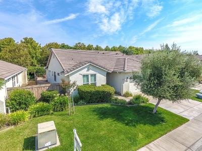 Elk Grove Single Family Home For Sale: 2933 Tree Swallow Circle