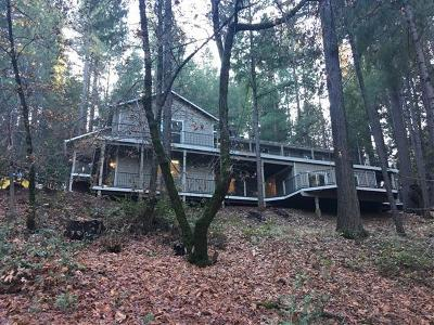 Grass Valley Single Family Home For Sale: 15993 Shebley Road