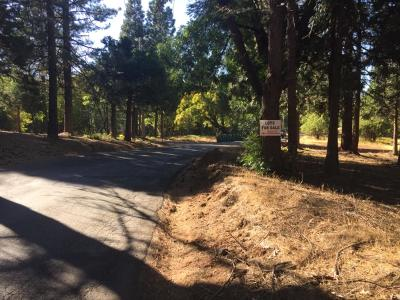 Pollock Pines Residential Lots & Land For Sale: Arundel Road
