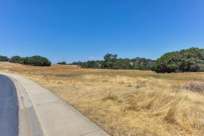 El Dorado Hills Residential Lots & Land For Sale: 3526 Greenview Drive