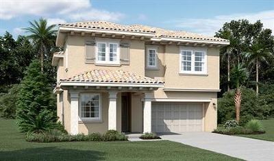 Mountain House Single Family Home For Sale: 340 E Liverno Lane