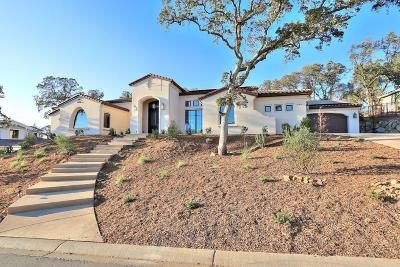El Dorado Hills Single Family Home For Sale: 5200 Da Vinci Drive