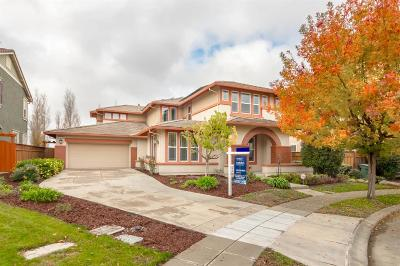 Mountain House Single Family Home For Sale: 23 Northeast N Menlo Park Street