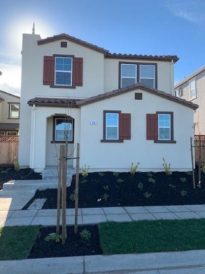 Mountain House Single Family Home For Sale: 74 East Cortona Court