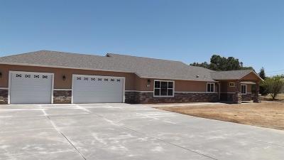 Elverta Single Family Home For Sale: 447 Antelope Street