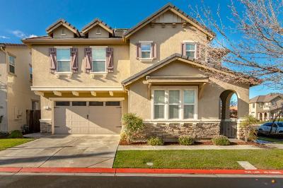 San Joaquin County Single Family Home For Sale: 17211 South Fox Hatch Lane