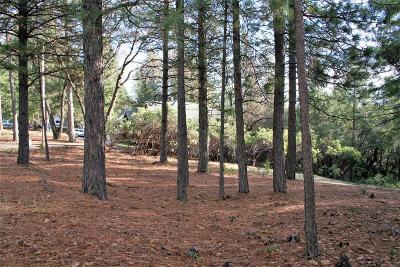 Foresthill Residential Lots & Land For Sale: 6319 Green Leaf Lane