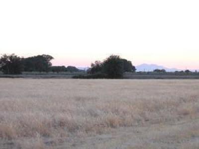 Lodi Residential Lots & Land For Sale: 11157 North Golfview Road