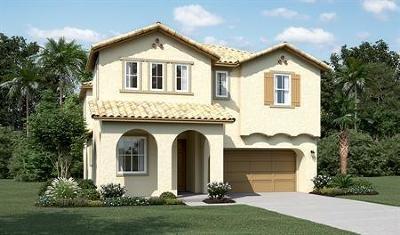 Mountain House Single Family Home For Sale: 1522 S. Terra Verde