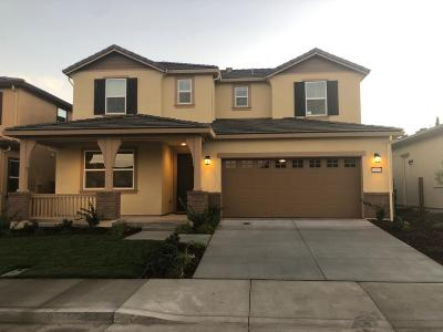 Tracy Single Family Home For Sale: 2520 David Waite Drive