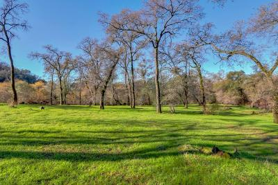 Lincoln Residential Lots & Land For Sale: 1694 Camino Verdera