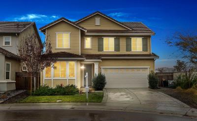 Lathrop Single Family Home For Sale: 18409 Pilot Ct
