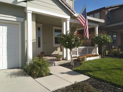 Vacaville Single Family Home For Sale: 248 Ginger Street