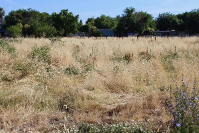 Yuba City Residential Lots & Land For Sale: 2915 Monroe Road