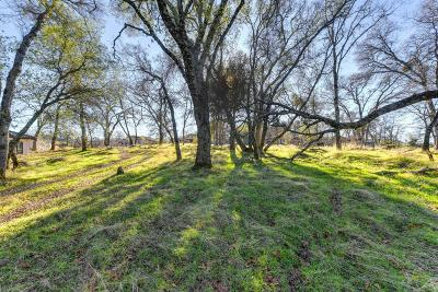 El Dorado Hills Residential Lots & Land For Sale: 3744 Greenview Drive
