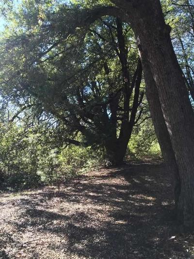 Pine Grove Residential Lots & Land For Sale: 19435 Ridge Road