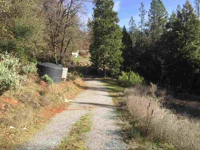 Wilseyville Residential Lots & Land For Sale: 4542 Blue Mountain Road