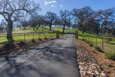 Amador County Residential Lots & Land For Sale: 18550 Silver Oak Lane