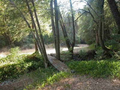Sutter Creek Residential Lots & Land For Sale: East Quartz Mountain Road