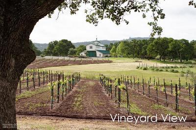 Smartsville CA Single Family Home For Sale: $5,900,000