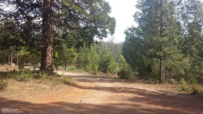 Nevada County Residential Lots & Land For Sale: 11741 Brunswick Road