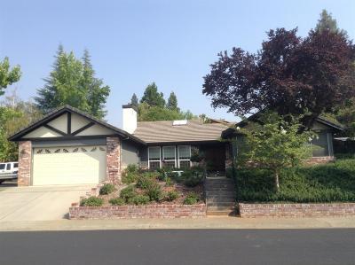 Auburn Single Family Home For Sale: 12957 Erin Drive