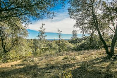 Placerville Residential Lots & Land For Sale: 1371 Moccasin Trail