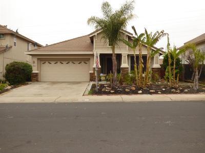 Sacramento Single Family Home For Sale: 8240 East Rivallo Way