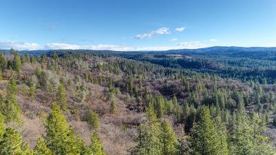 Camino Residential Lots & Land For Sale: 4981 Buena Court