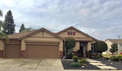 Roseville Single Family Home For Sale: 1509 Roadrunner Drive