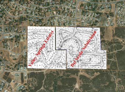 Valley Springs Residential Lots & Land For Sale: 3865 Delin Way