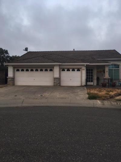 Elk Grove Single Family Home Pending Sale: 8700 Quiet Dawn Court
