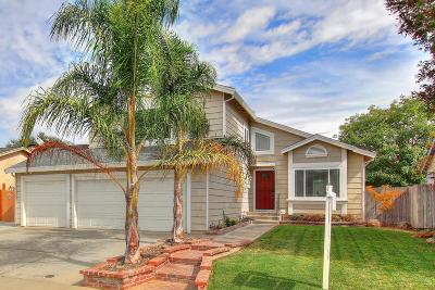 Elk Grove Single Family Home For Sale: 9879 Falcon Meadow Drive