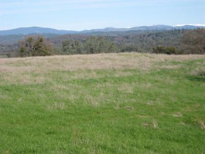 Placerville Residential Lots & Land For Sale: 21 North 5601 Gold Hill Road