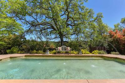 El Dorado Hills Single Family Home For Sale: 4087 Bancroft Drive