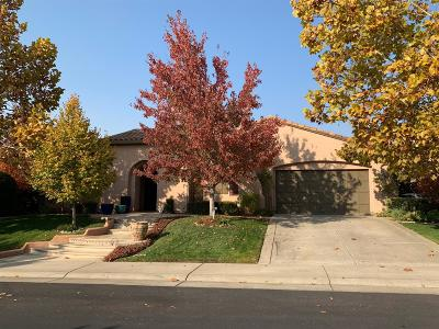 Rocklin Single Family Home For Sale: 1805 Sorrell Circle