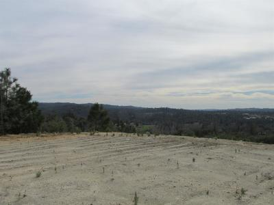 Placerville Residential Lots & Land For Sale: Coon Hollow Road