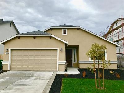 Stockton Single Family Home For Sale: 2223 Tidewind Drive