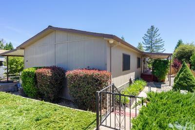 Pine Grove Single Family Home For Sale: 14074 Irishtown Road