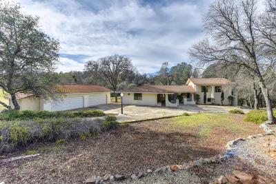 Shingle Springs Single Family Home For Sale: 2840 Shingle Springs Drive