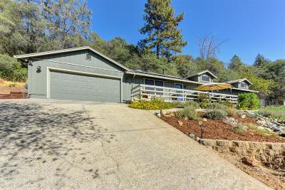 El Dorado County Single Family Home For Sale: 4201 Toyon Court
