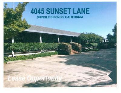Shingle Springs Commercial For Sale: 4045 Sunset #B