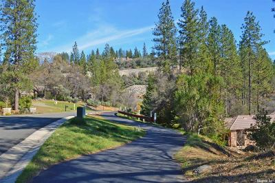 Meadow Vista Residential Lots & Land For Sale: 1451 Lodge View Drive