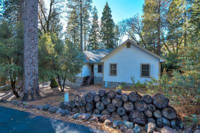 El Dorado County Single Family Home For Sale: 1312 Squaw Rock Trail