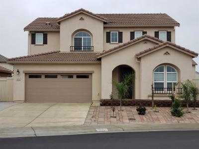 Elk Grove Single Family Home For Sale: 9904 Bluefin Way