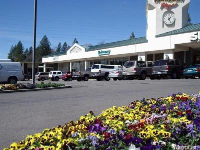Placerville Commercial For Sale: 1327 Broadway #Unit 132